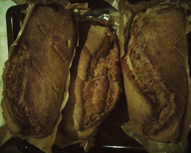 painici cu maia