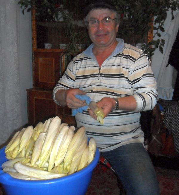 cultivator-de-andive-din-judetul-Neamt